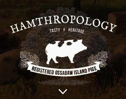 Hamthropology - Single Page Design