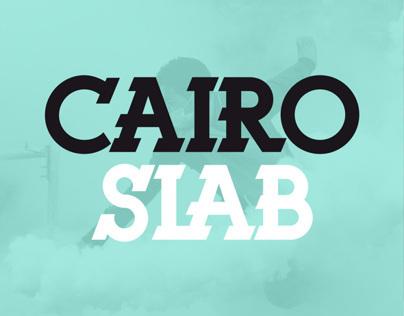 Cairo Slab UT