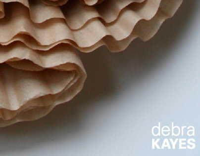 Artist Booklet for Debra Kayes