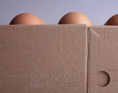 egg box toaster