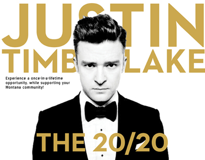 Justin Timberlake Auction Package