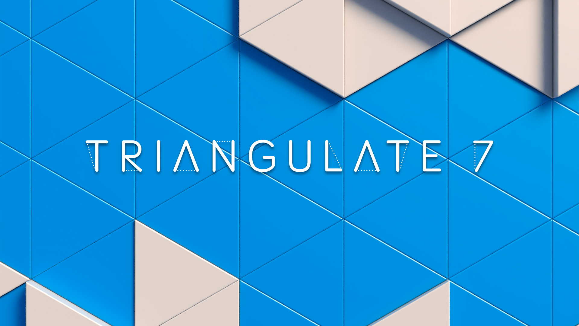 Image Triangulator App