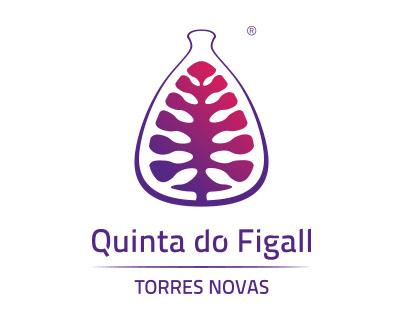 Quinta do Figall