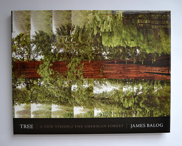 Tree by James Balog