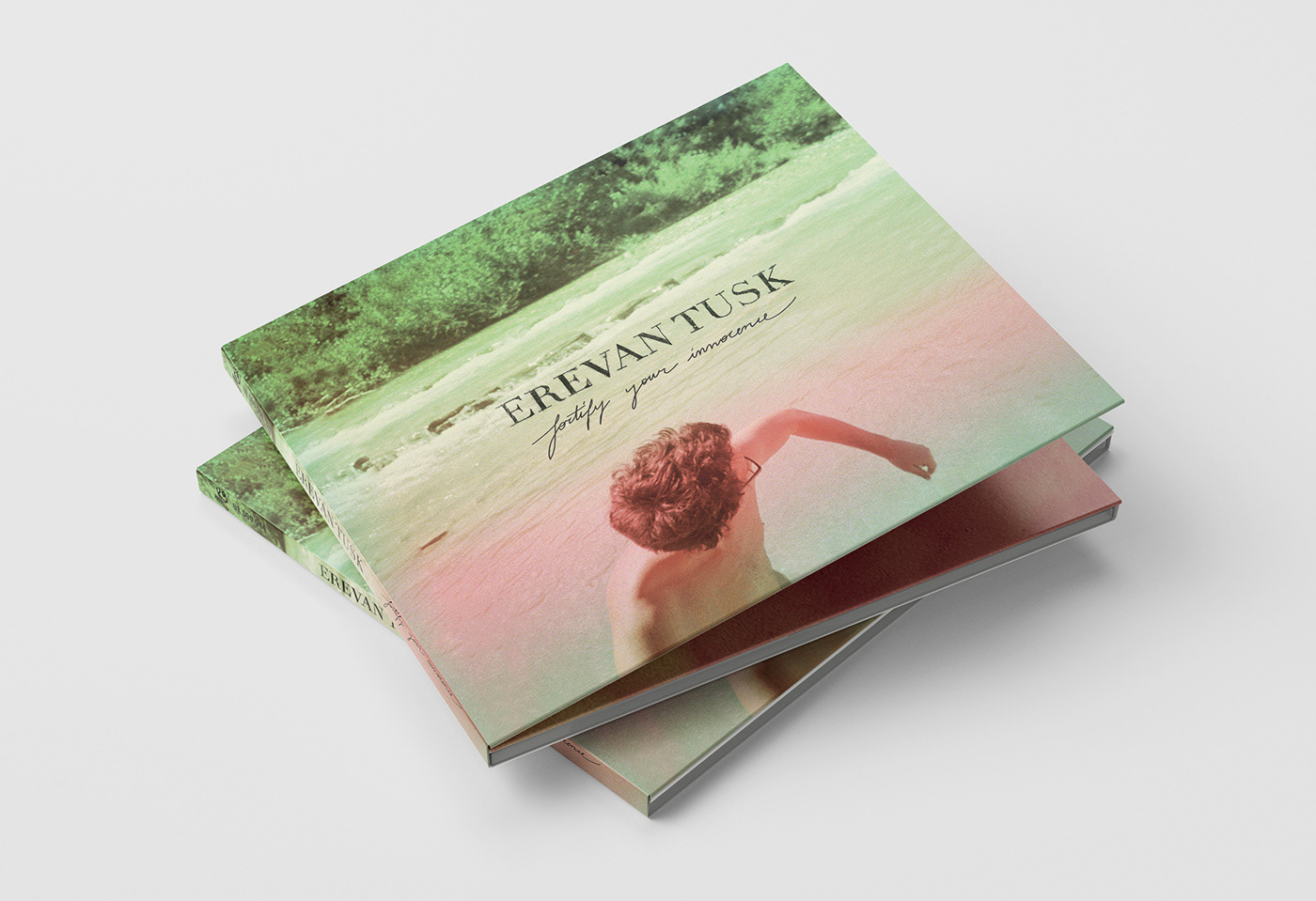 EREVAN TUSK COVER ALBUM - commercial cover