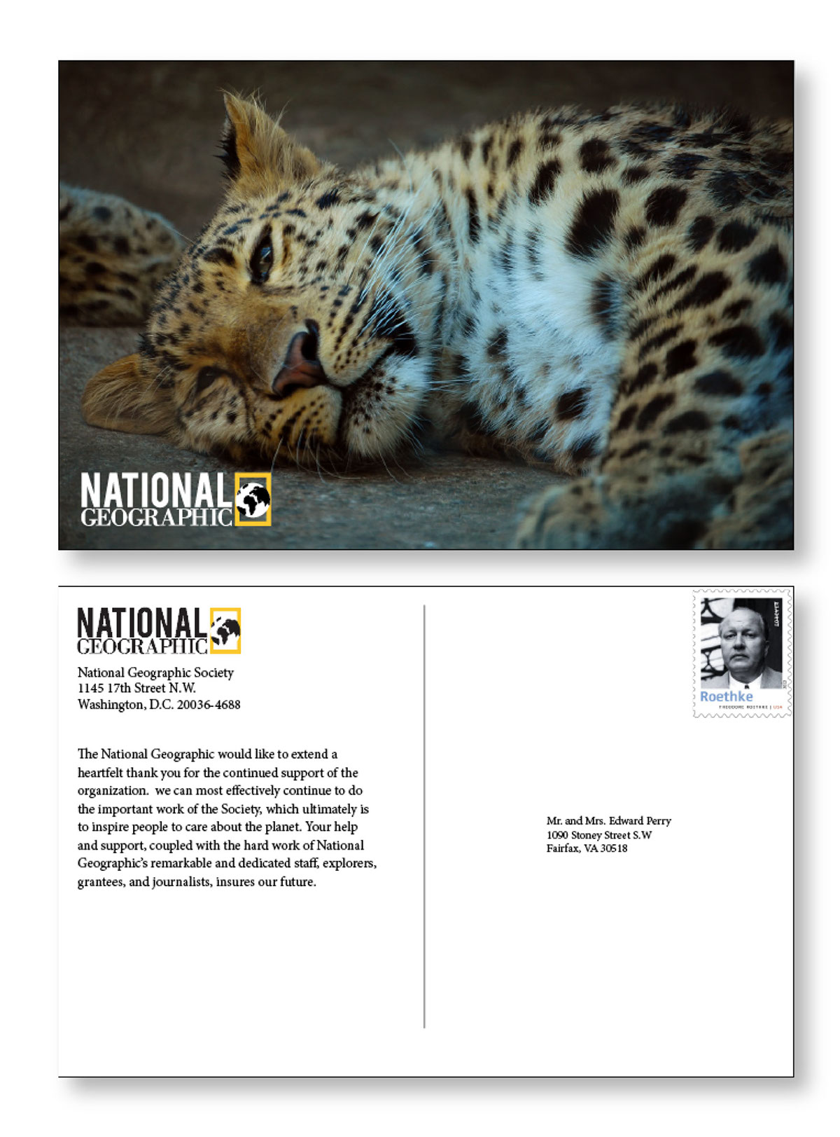 National Geographic Rebranding