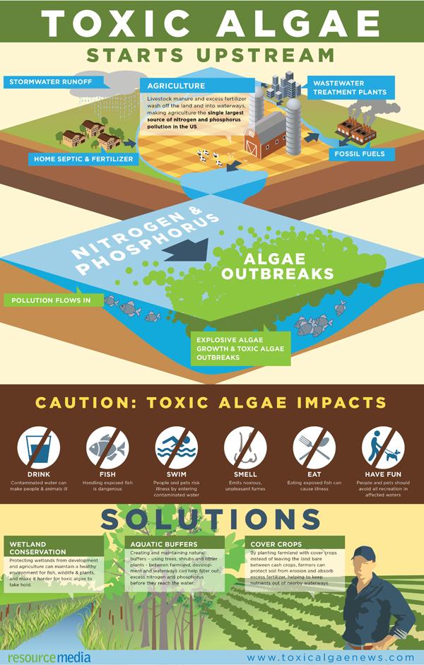Resource Media Infographics
