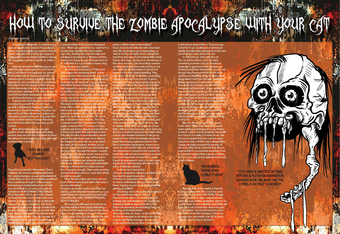 Magazine Layout Design 2010