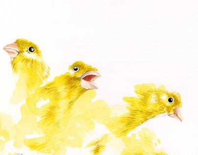 Bird Sequence #5
