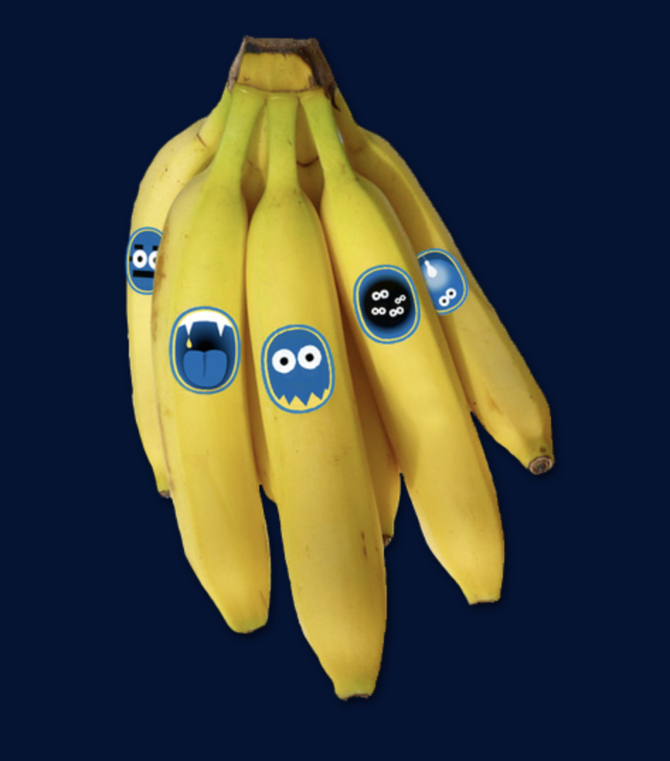 Chiquita Banana Stickers