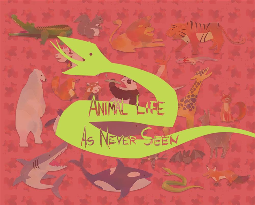Animal Life As Never Seen