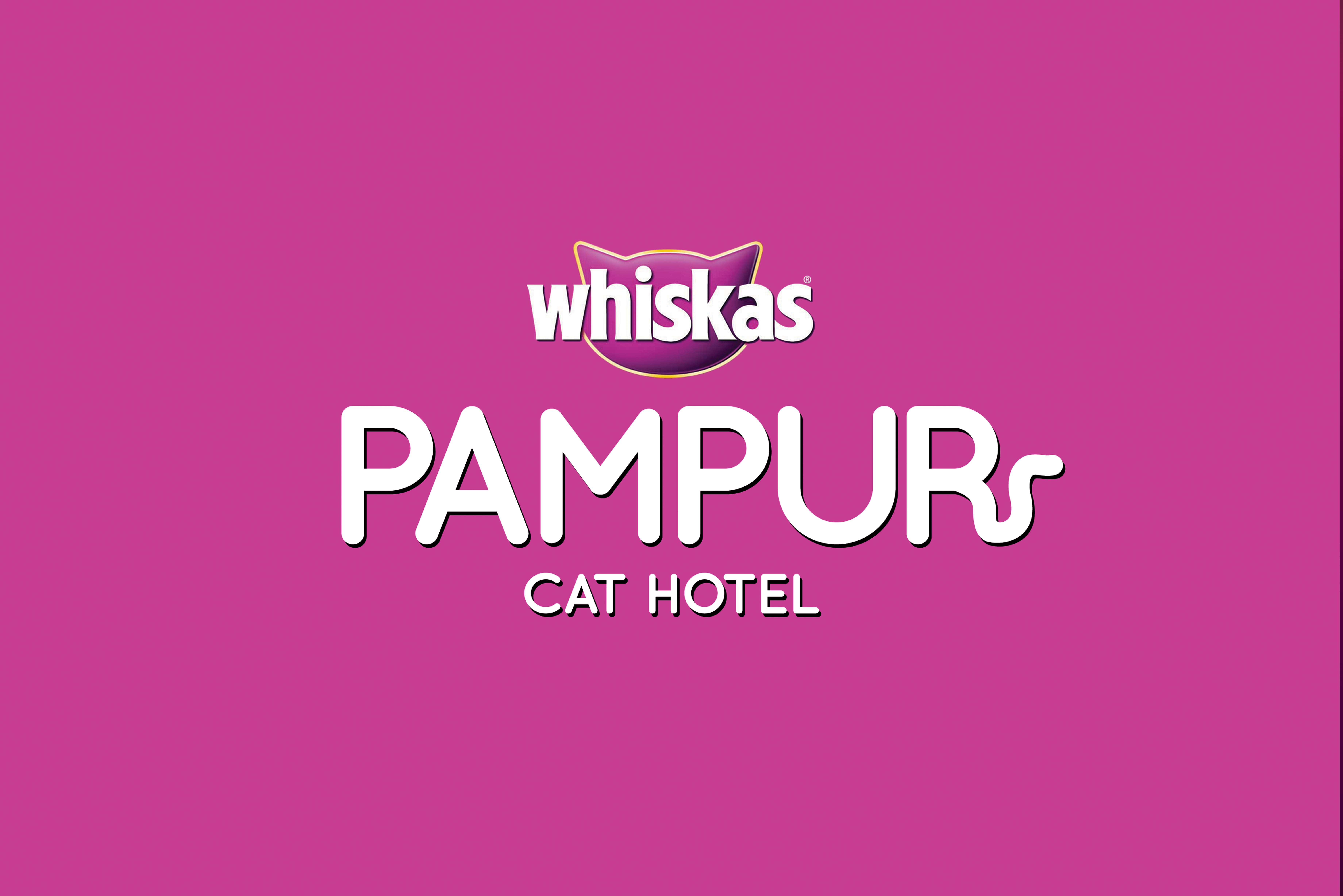 Pampur Cat Hotel