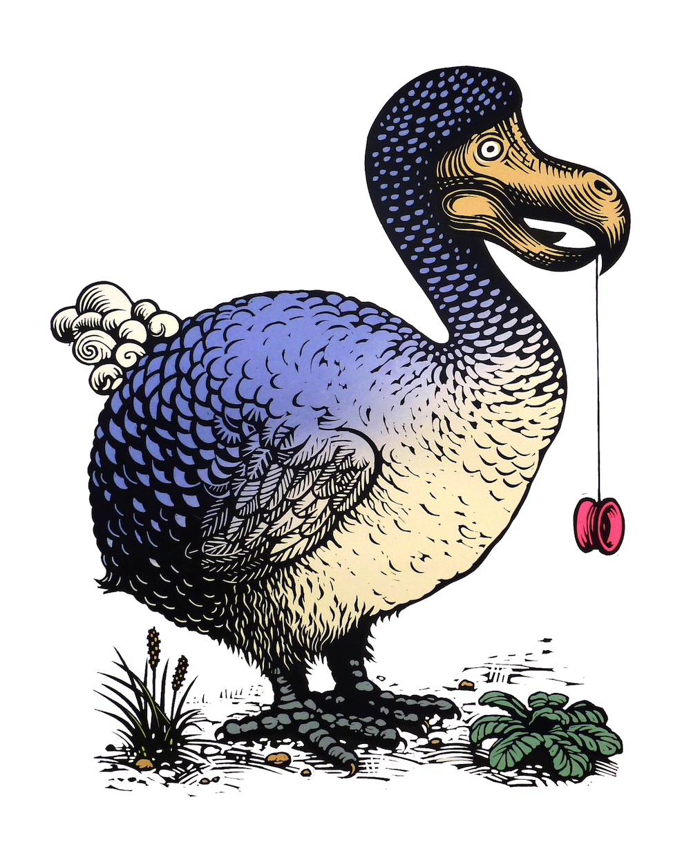 Dodo with a yoyo
