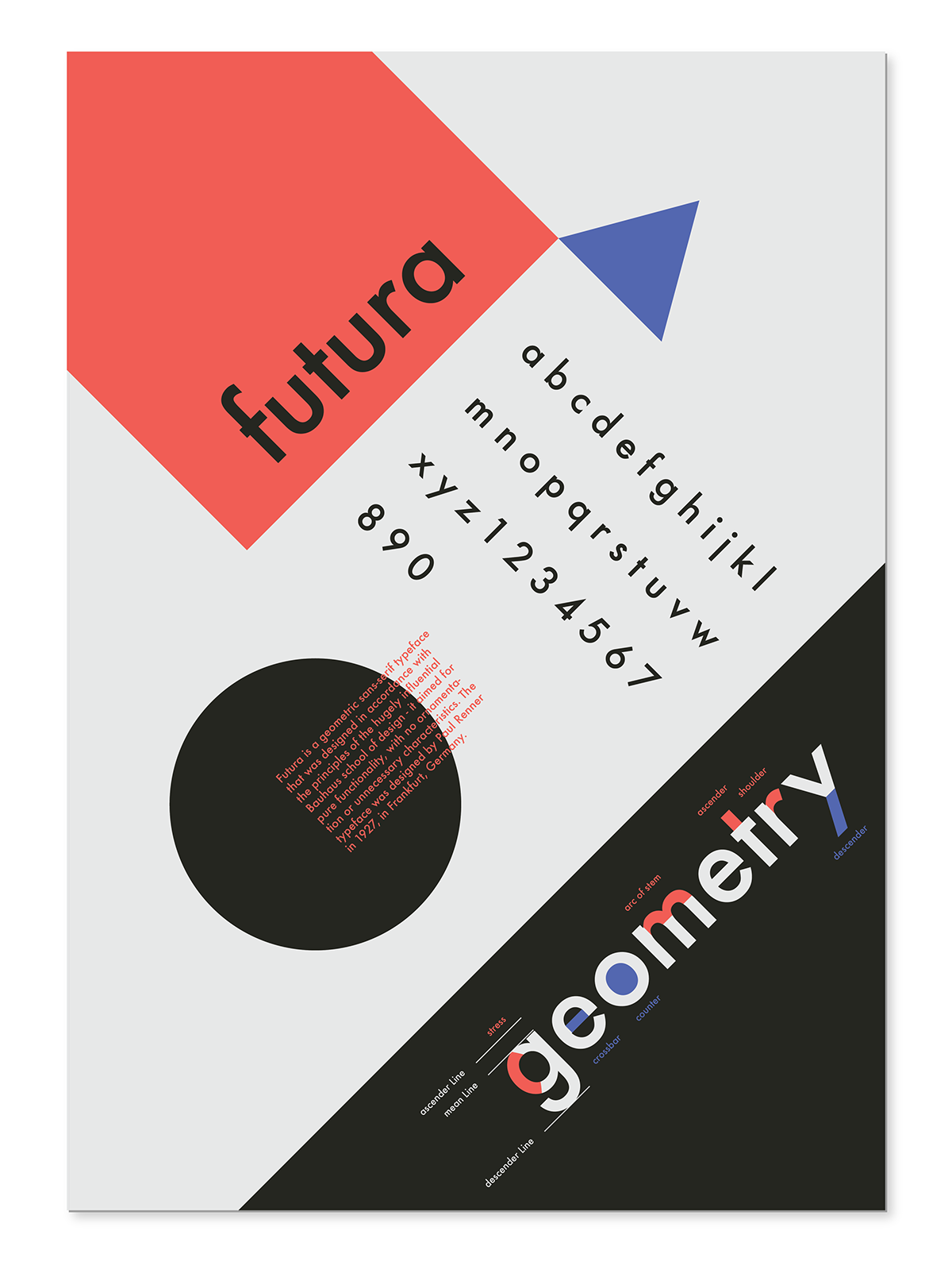 Typographic Anatomy Poster