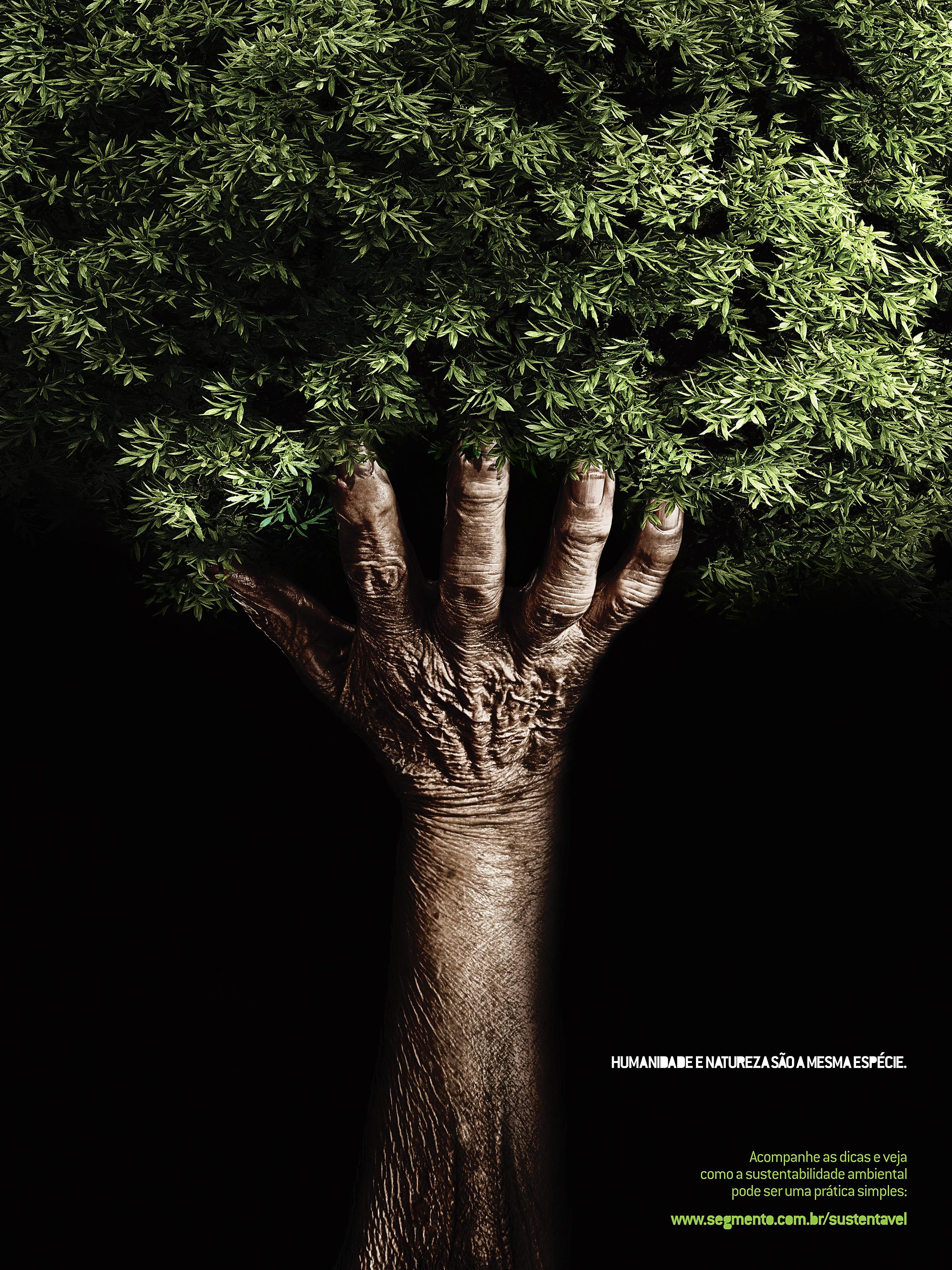 Segmento Sustentável