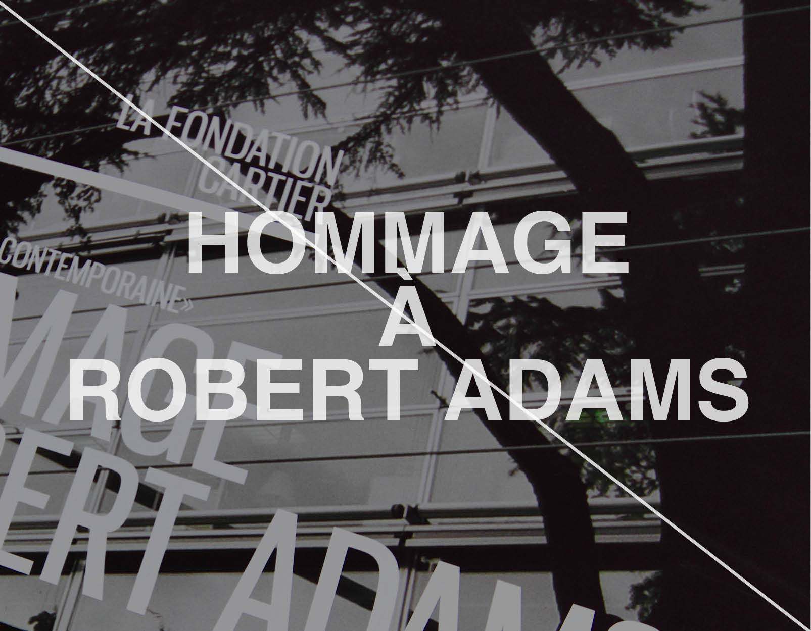 Hommage à Robert Adams - Scenography //