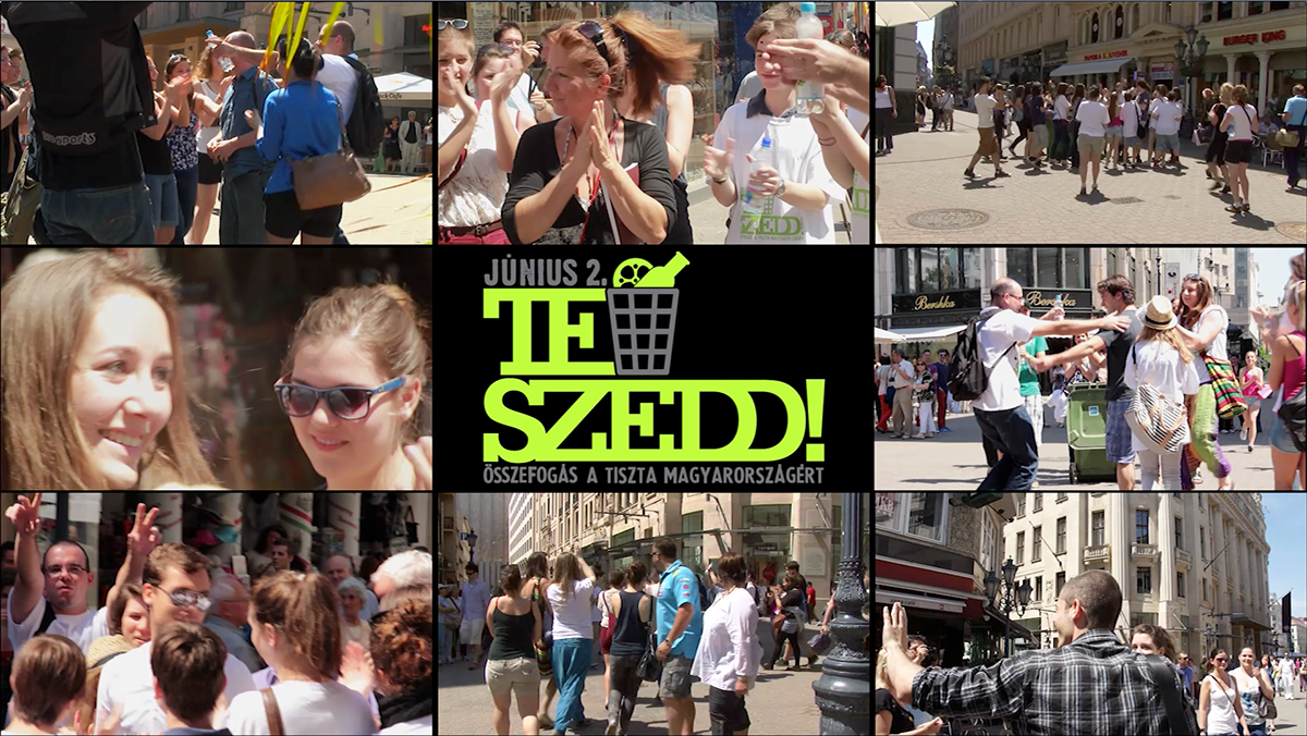 Flashmob, Budapest, Hungary