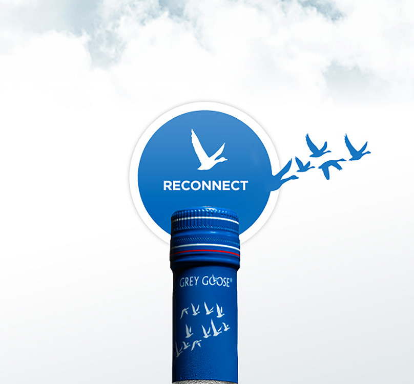 Grey Goose Vodka Summer Connections
