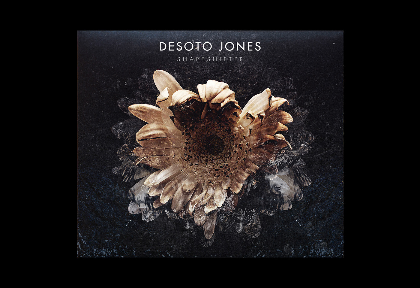 Desoto Jones / Shapeshifter