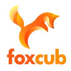 Fox Cub Games
